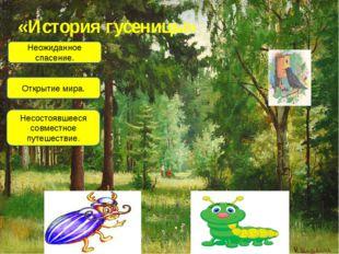 «История гусеницы» Неожиданное спасение. Открытие мира. Несостоявшееся совмес