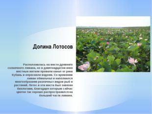 Долина Лотосов Расположилась на месте древнего солнечного лимана, но в девятн