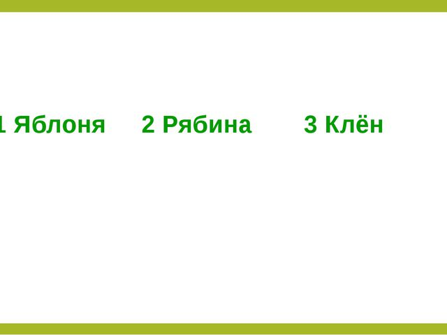 1 Яблоня 2 Рябина 3 Клён
