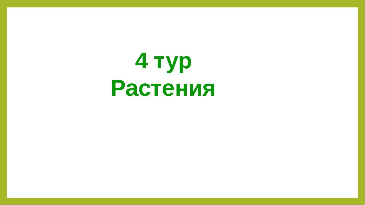 4 тур Растения