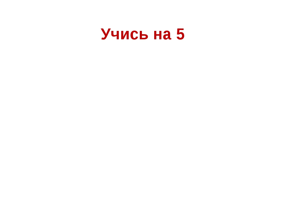 Учись на 5