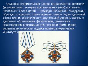 Орденом «Родительская слава» награждаются родители (усыновители), которые во