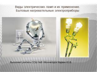 Виды электрических ламп и их применение. Бытовые нагревательные электроприбор