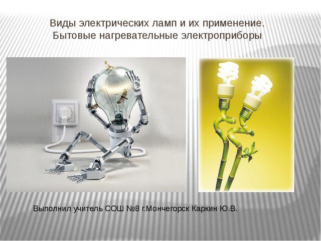 Виды электрических ламп и их применение. Бытовые нагревательные электроприбор...