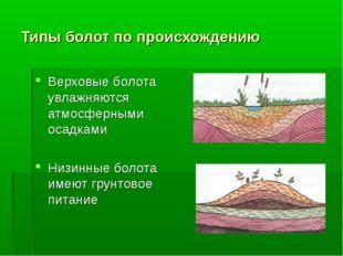 Типы болот по происхождению Верховые болота увлажняются атмосферными осадками