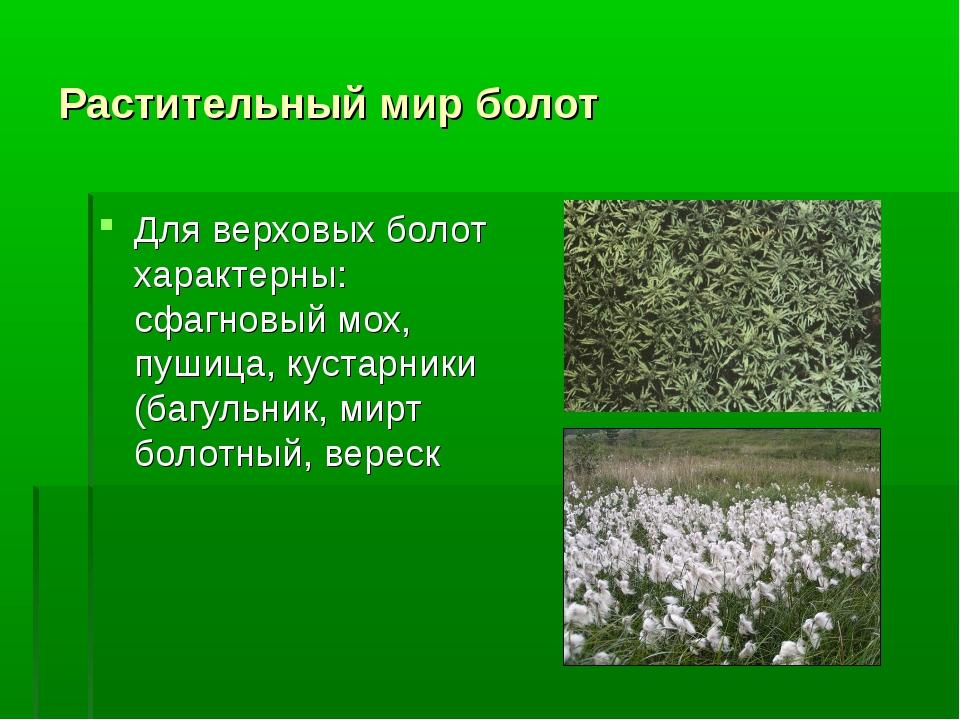 Растительный мир болот Для верховых болот характерны: сфагновый мох, пушица,...