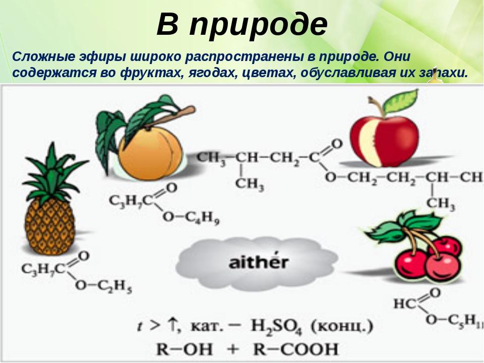 В природе Сложные эфиры широко распространены в природе. Они содержатся во фр...