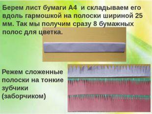 Берем лист бумаги А4 и складываем его вдоль гармошкой на полоски шириной 25 м