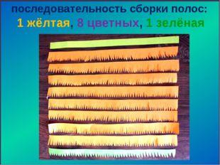 последовательность сборки полос: 1 жёлтая, 8 цветных, 1 зелёная