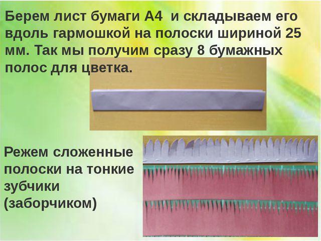 Берем лист бумаги А4 и складываем его вдоль гармошкой на полоски шириной 25 м...
