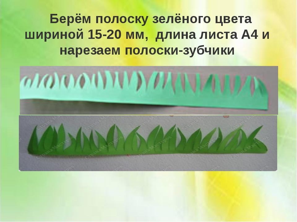 Берём полоску зелёного цвета шириной 15-20 мм, длина листа А4 и нарезаем пол...