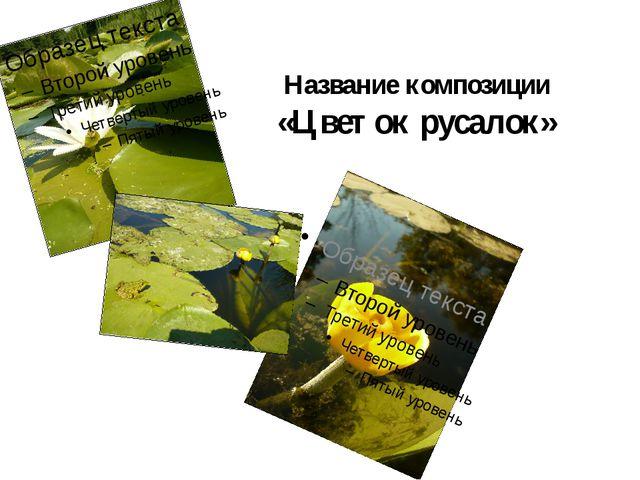 Название композиции «Цветок русалок»