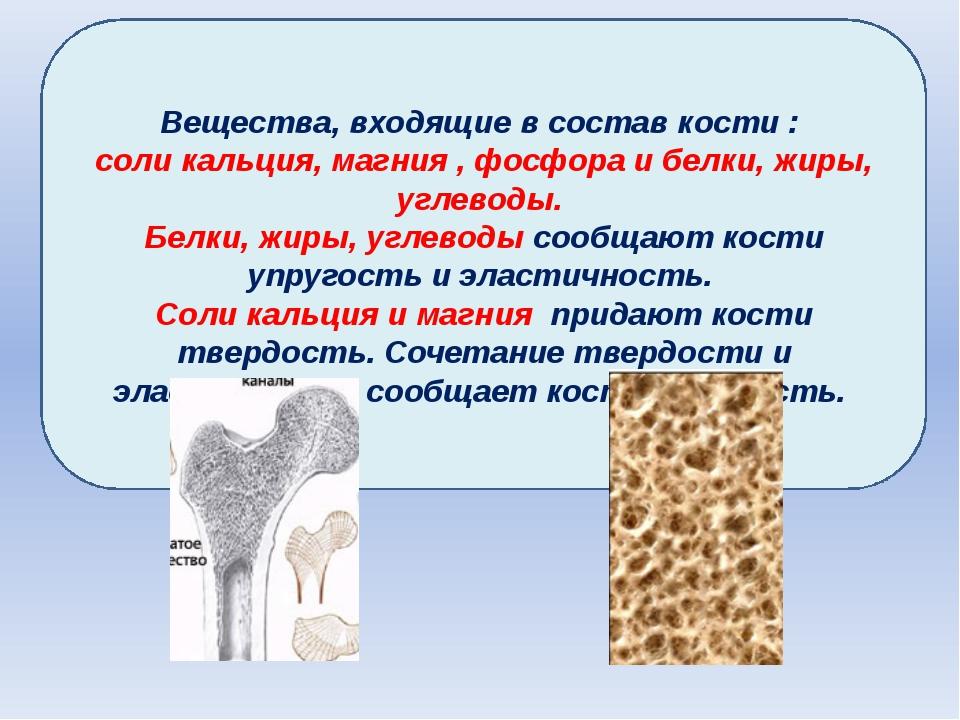 Вещества, входящие в состав кости : соли кальция, магния , фосфора и белки, ж...