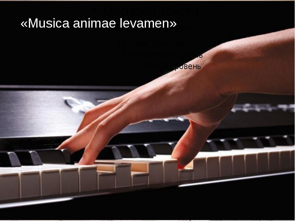 «Musica animae levamen»