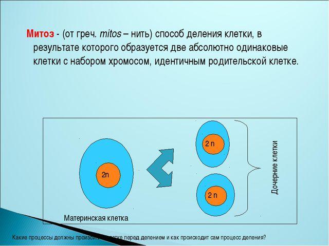 Митоз - (от греч. mitos – нить) способ деления клетки, в результате которого...