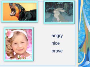 angry nice brave