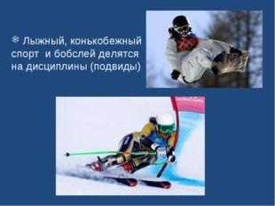 Лыжный, конькобежный спорт и бобслей делятся на дисциплины (подвиды)