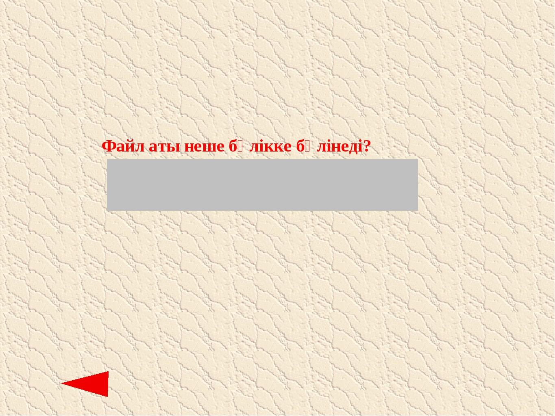 Файл аты неше бөлікке бөлінеді? (оң және сол: фийыл типі және файл аты)