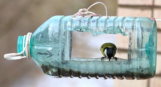 Кормушка из 5 литровой пластиковой бутылки своими руками