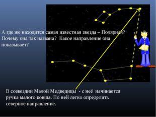 В созвездии Малой Медведицы - с неё начинается ручка малого ковша. По ней лег