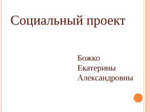 Социальный проект Божко Екатерины Александровны