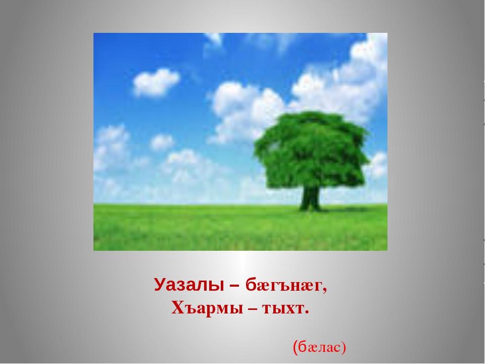 Уазалы – бæгънæг, Хъармы – тыхт. (бæлас)