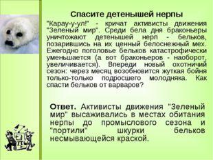 "Спасите детенышей нерпы ""Карау-у-ул!"" - кричат активисты движения ""Зеленый м"