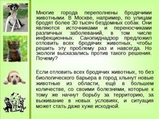 Многие города переполнены бродячими животными. В Москве, например, по улицам