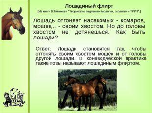 """Лошадиный флирт [Из книги В.Тимохова """"Творческие задачи по биологии, экологи"""