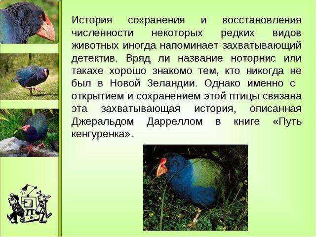 История сохранения и восстановления численности некоторых редких видов живот...