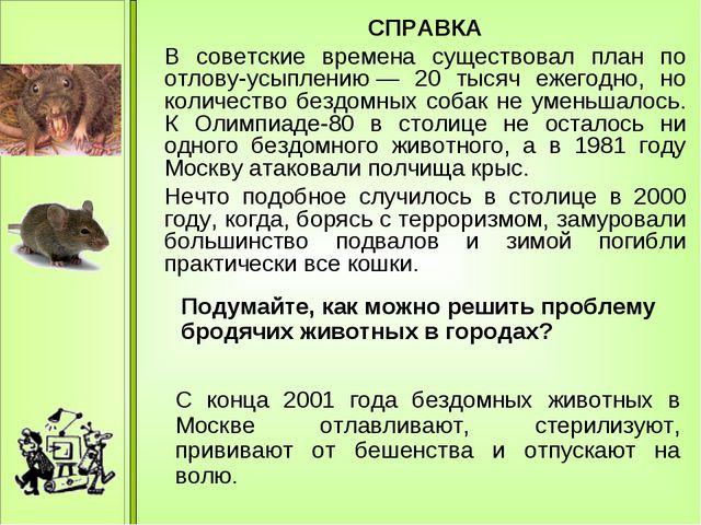 СПРАВКА В советские времена существовал план по отлову-усыплению— 20 тысяч...