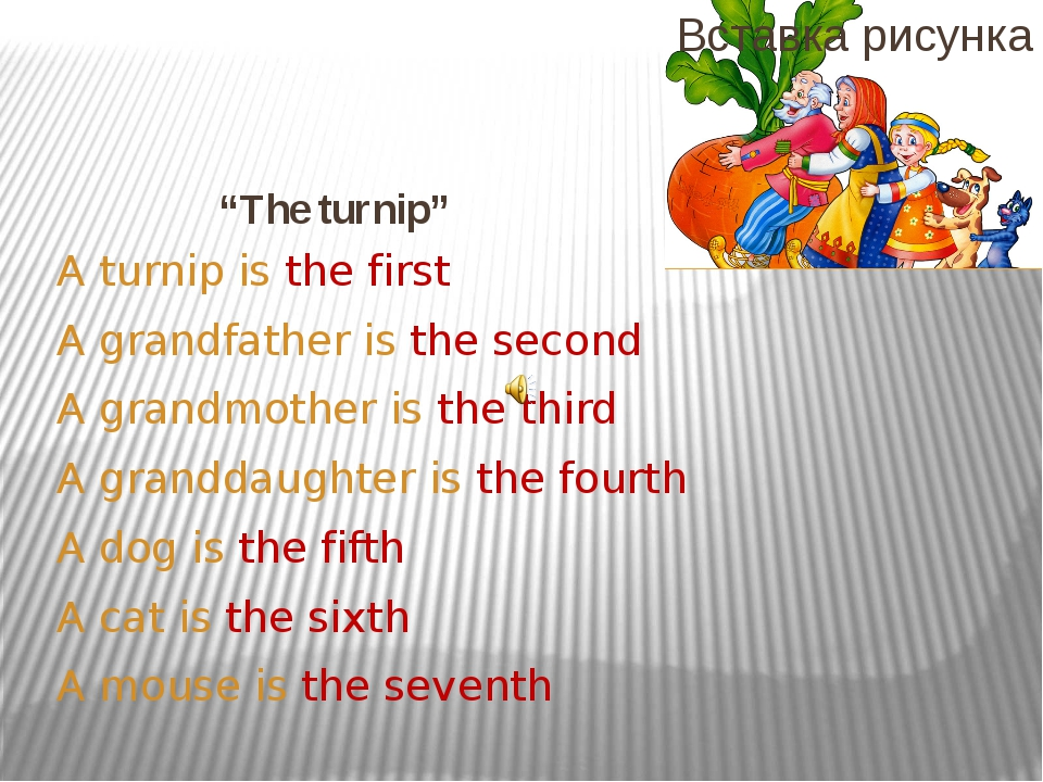 """The turnip"" A turnip is the first A grandfather is the second A grandmother..."