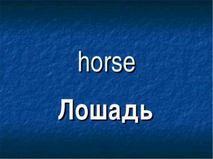 horse Лошадь