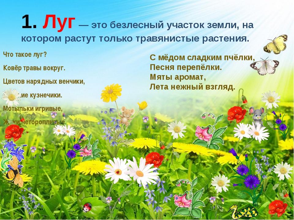 соревнование, где полевые цветы в июле стихи картинки названия небольшими
