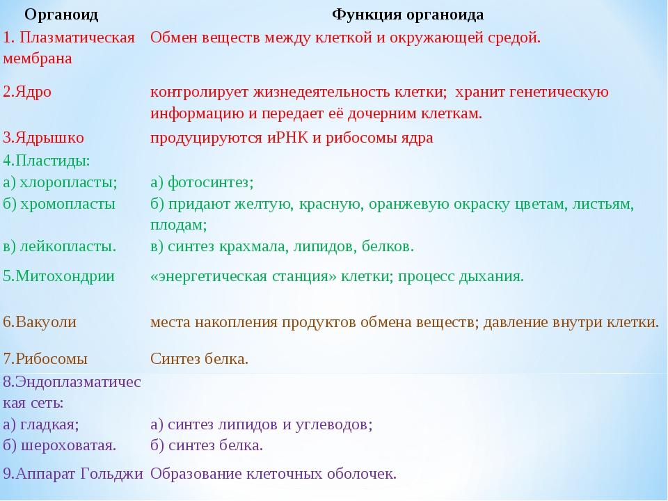 ОрганоидФункция органоида 1. Плазматическая мембранаОбмен веществ между кл...