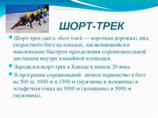 ШОРТ-ТРЕК Шорт-трек(англ.short track— короткая дорожка), вид скоростного б