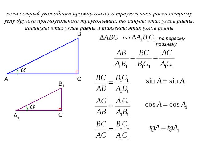 А В С если острый угол одного прямоугольного треугольника равен острому углу...
