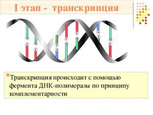 и-РНК переносит информацию из ядра на рибосомы и становится матричной РНК (м-