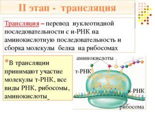 Акцепторный конец – присоединяет аминокислоту Кодовый триплет (антикодон) *Су