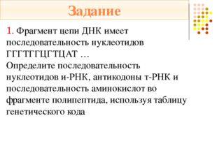 2. Установите соответствие: ЭТАПЫ: 1) транскрипция  2) трансляция ХАРАКТЕРИС