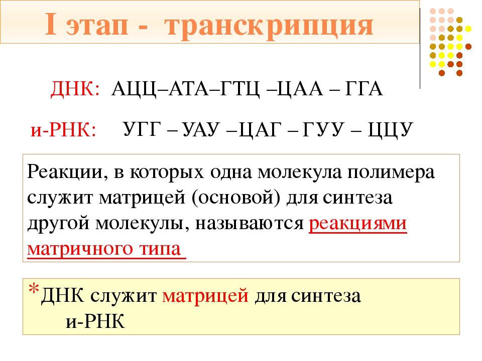 Трансляция – перевод нуклеотидной последовательности с и-РНК на аминокислотну...