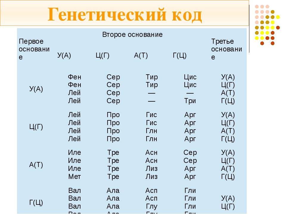 Генетический код Первое основание Второе основание Третье основание У(А) Ц(Г)...