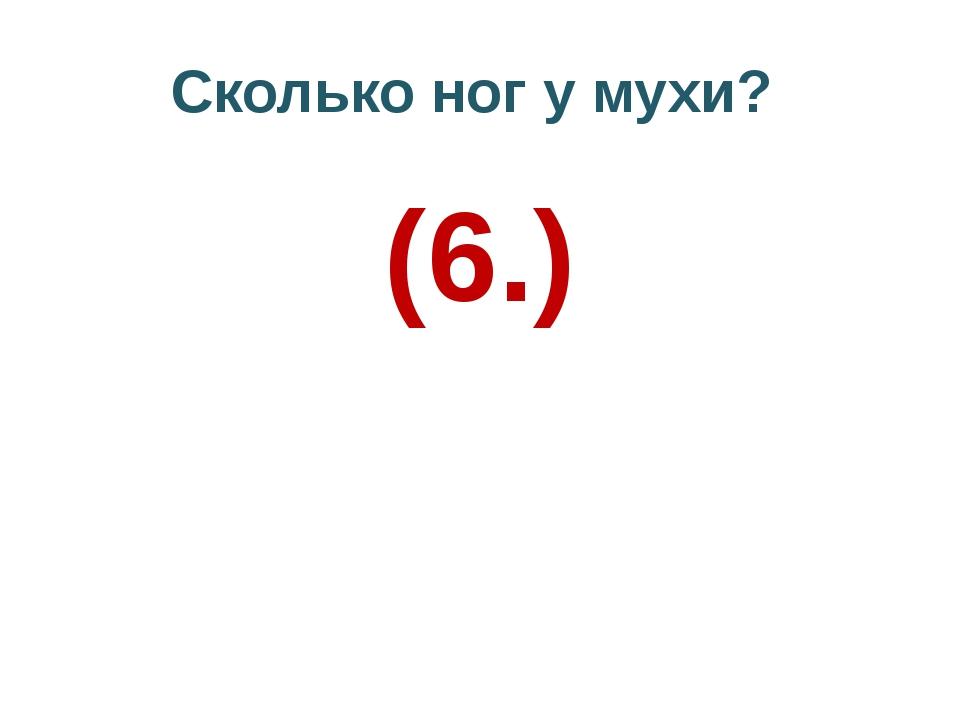 Сколько ног у мухи? (6.)