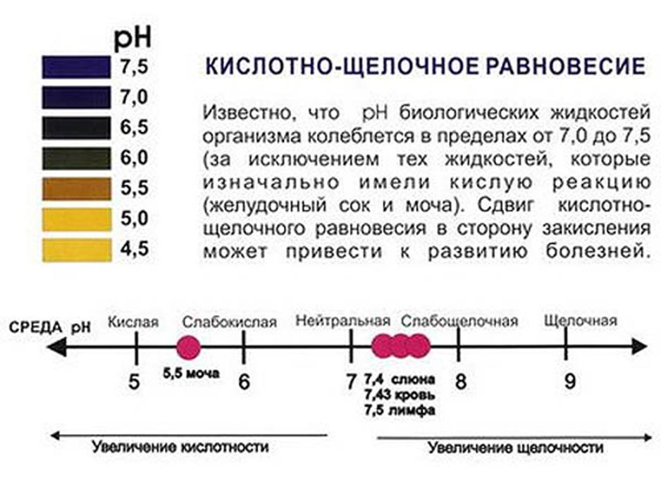 prostitutki-g-n-novgoroda-dosug