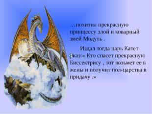 …похитил прекрасную принцессу злой и коварный змей Модуль . Издал тогда царь
