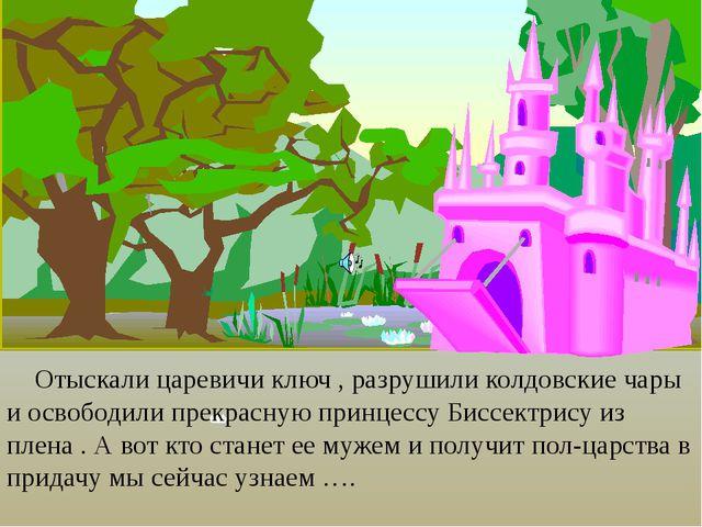 Отыскали царевичи ключ , разрушили колдовские чары и освободили прекрасную п...