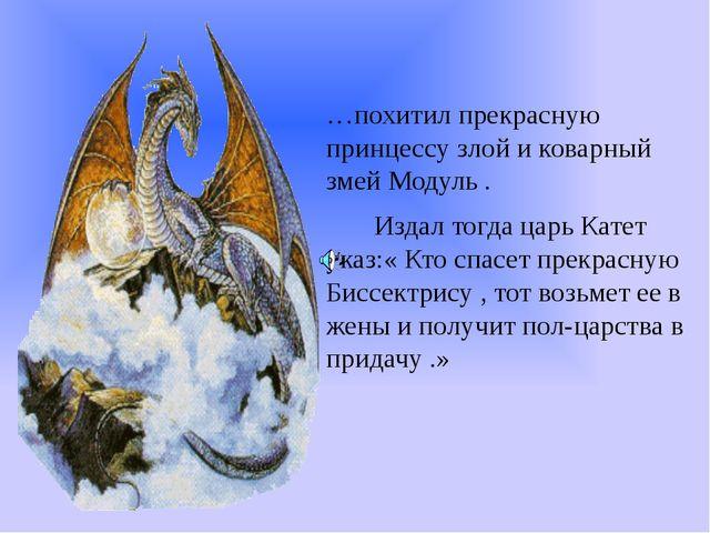 …похитил прекрасную принцессу злой и коварный змей Модуль . Издал тогда царь...