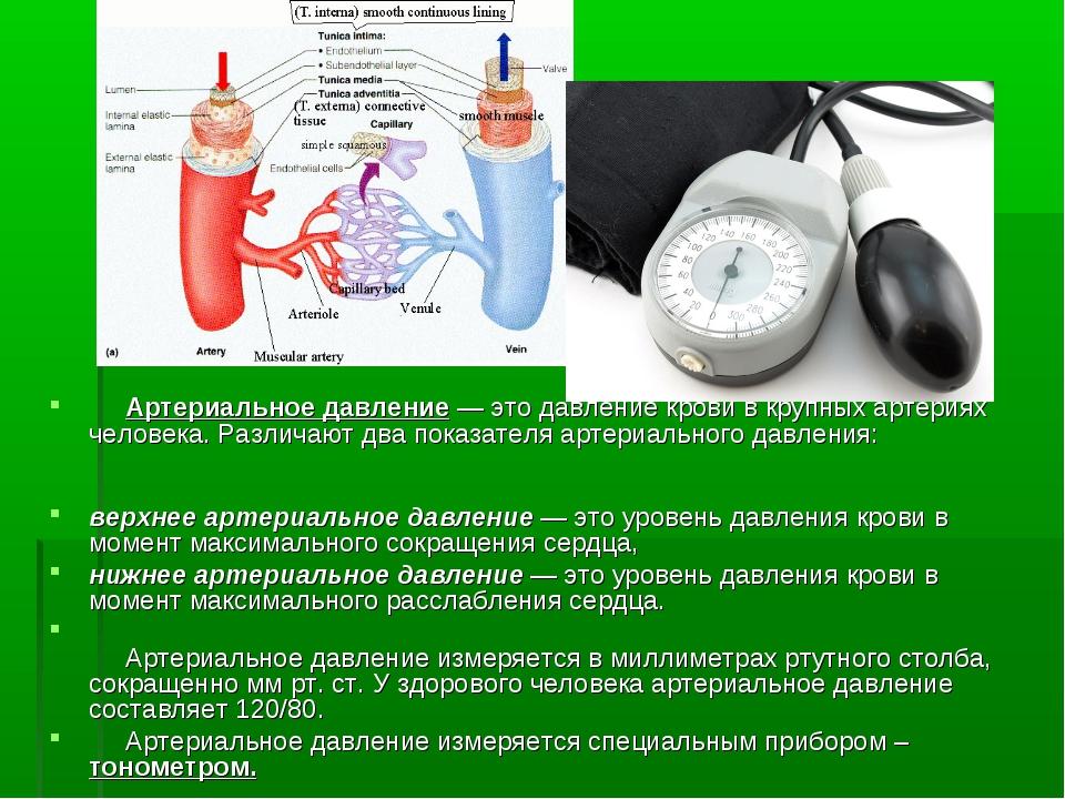 Артериальное давление — это давление крови в крупных артериях человека. Разл...