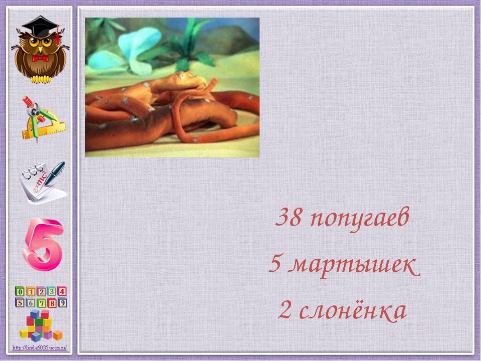38 попугаев 5 мартышек 2 слонёнка