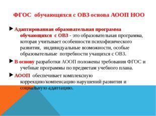 ФГОС обучающихся с ОВЗ основа АООП НОО Адаптированная образовательная програм